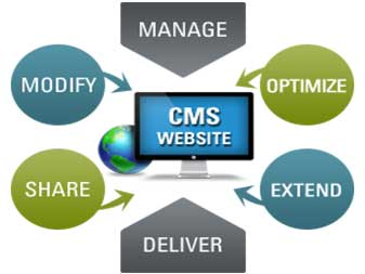 expert-cms-developer-lahore