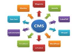 top-cms-wordpress-magento-designing-development-lahore-pakistan