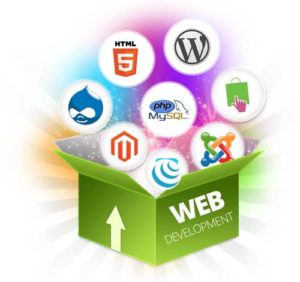 CMS Developer Ecommerce Web Designer in Pakistan